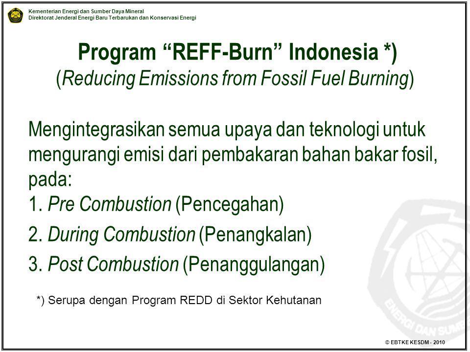 Program REFF-Burn Indonesia