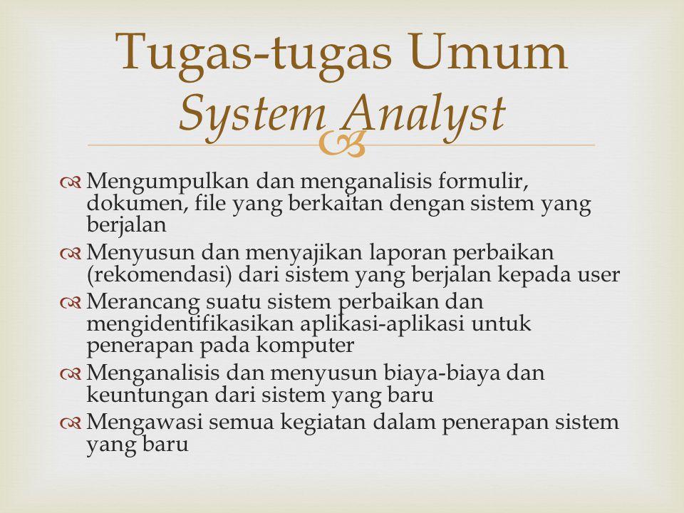 Tugas-tugas Umum System Analyst