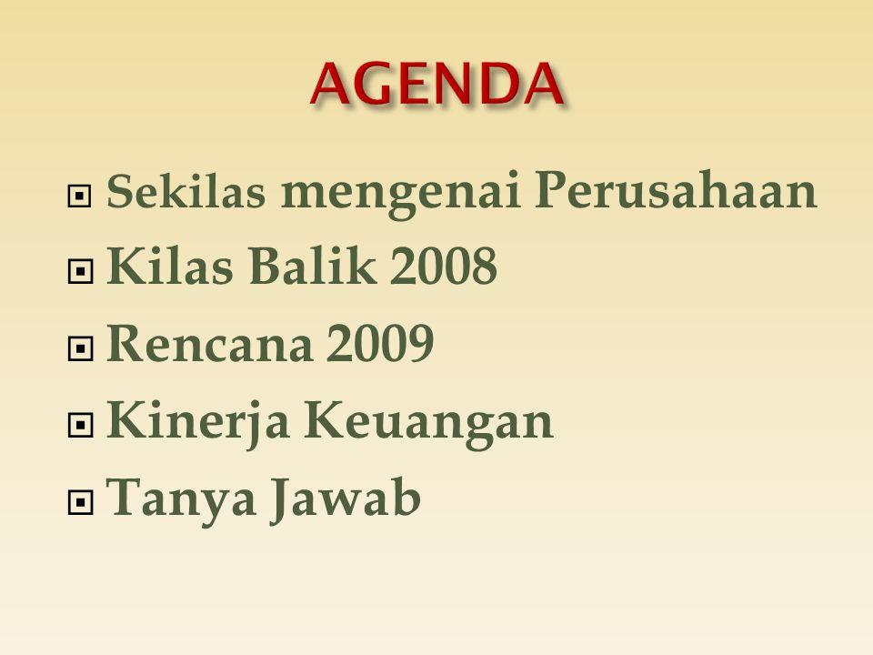 AGENDA Kilas Balik 2008 Rencana 2009 Kinerja Keuangan Tanya Jawab