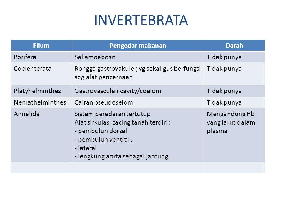 INVERTEBRATA Filum Pengedar makanan Darah Porifera Sel amoebosit