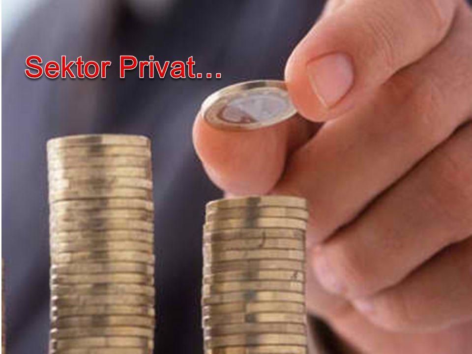 Sektor Privat…