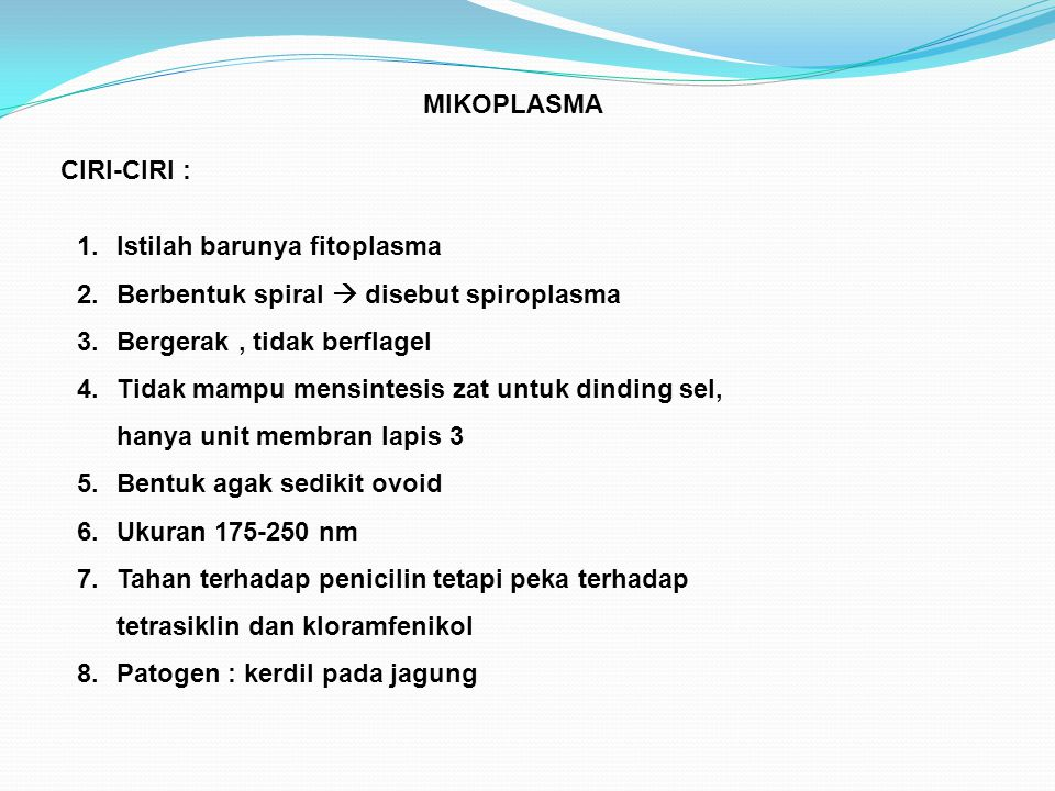 MIKOPLASMA CIRI-CIRI : Istilah barunya fitoplasma. Berbentuk spiral  disebut spiroplasma. Bergerak , tidak berflagel.