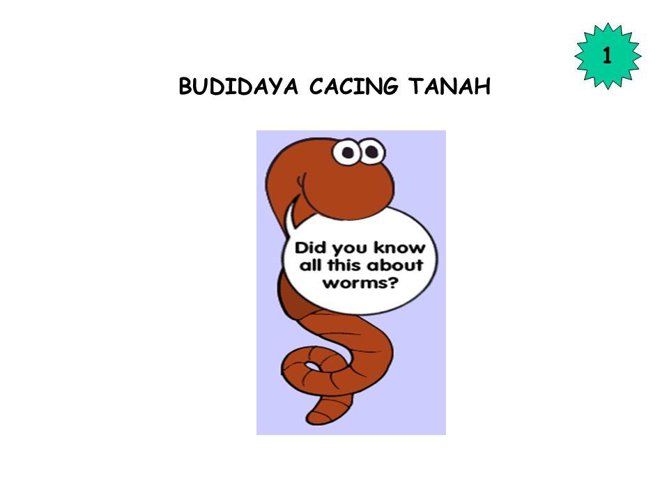 1 BUDIDAYA CACING TANAH