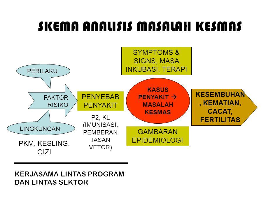 SKEMA ANALISIS MASALAH KESMAS