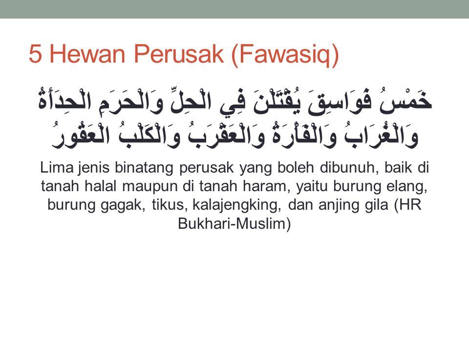 5 Hewan Perusak (Fawasiq)