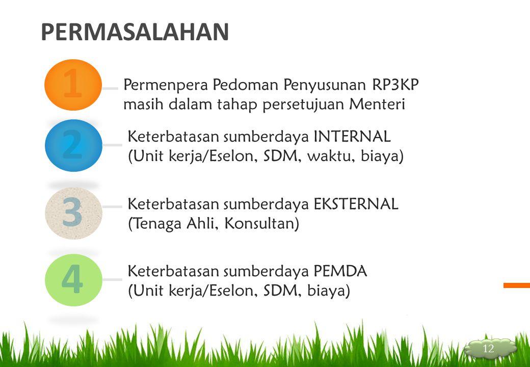 PERMASALAHAN 1. Permenpera Pedoman Penyusunan RP3KP masih dalam tahap persetujuan Menteri. 2. Keterbatasan sumberdaya INTERNAL.