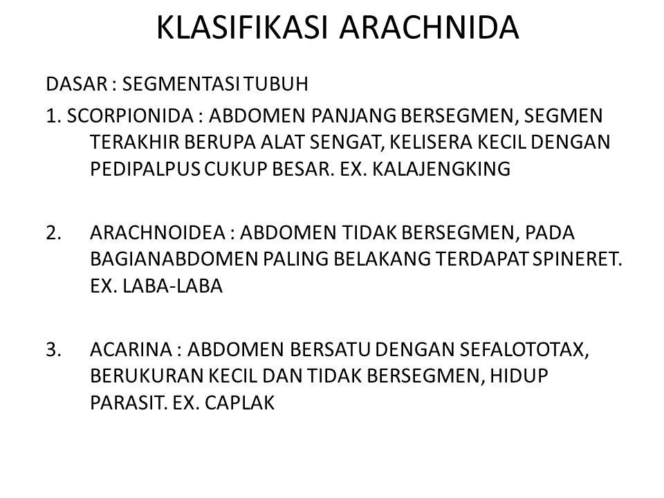 KLASIFIKASI ARACHNIDA
