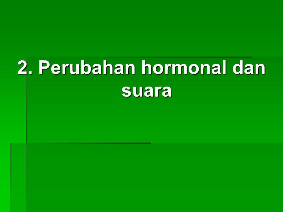 2. Perubahan hormonal dan suara