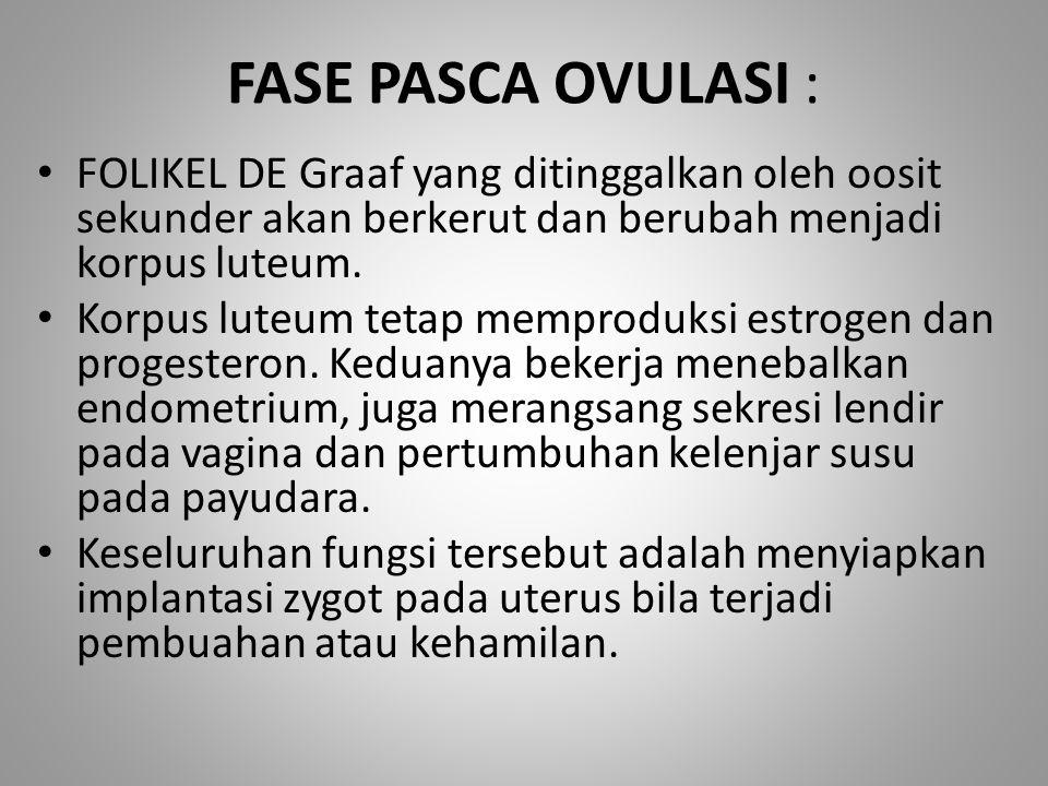 FASE PASCA OVULASI : FOLIKEL DE Graaf yang ditinggalkan oleh oosit sekunder akan berkerut dan berubah menjadi korpus luteum.