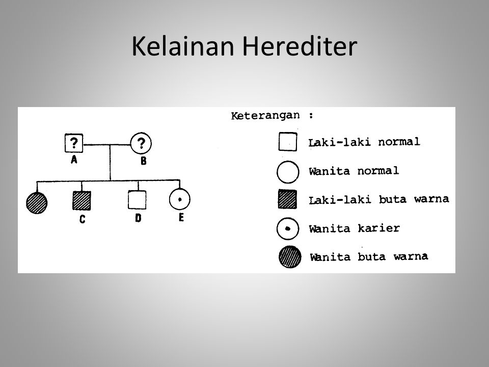 Kelainan Herediter