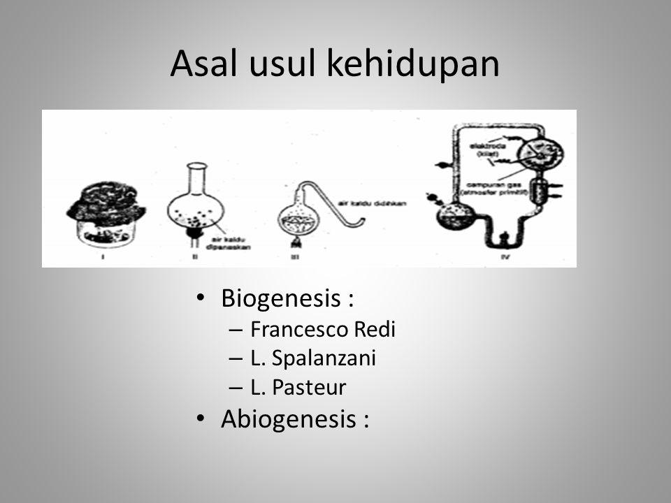 Asal usul kehidupan Biogenesis : Abiogenesis : Francesco Redi