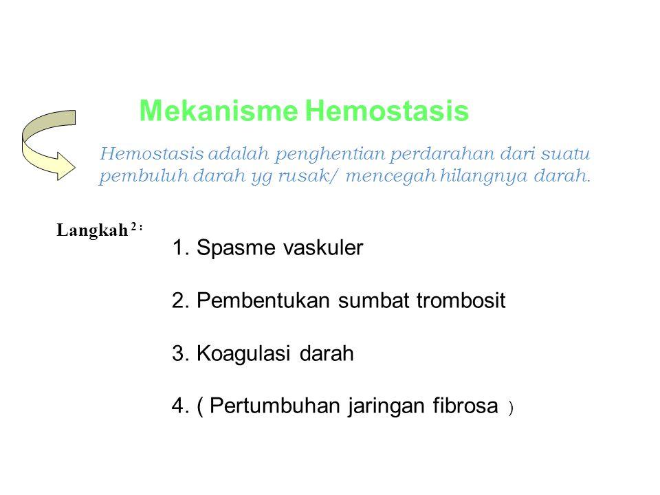 Mekanisme Hemostasis Spasme vaskuler Pembentukan sumbat trombosit