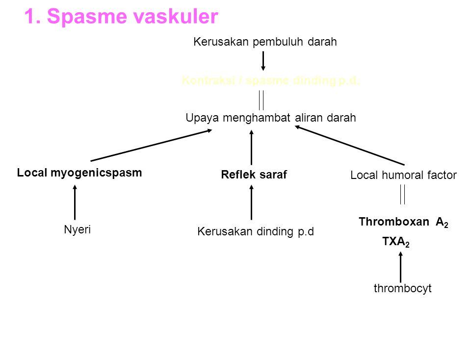 1. Spasme vaskuler Kerusakan pembuluh darah