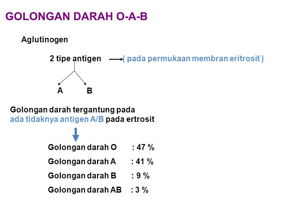 GOLONGAN DARAH O-A-B Aglutinogen