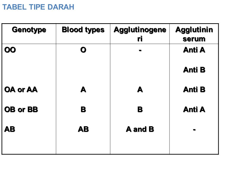 TABEL TIPE DARAH Genotype. Blood types. Agglutinogeneri. Agglutinin serum. OO. OA or AA. OB or BB.