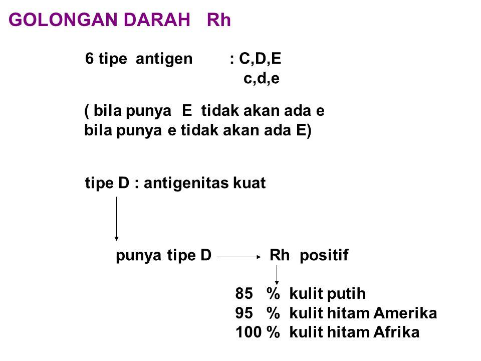 GOLONGAN DARAH Rh 6 tipe antigen : C,D,E c,d,e