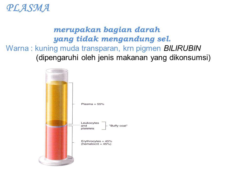 PLASMA merupakan bagian darah yang tidak mengandung sel.