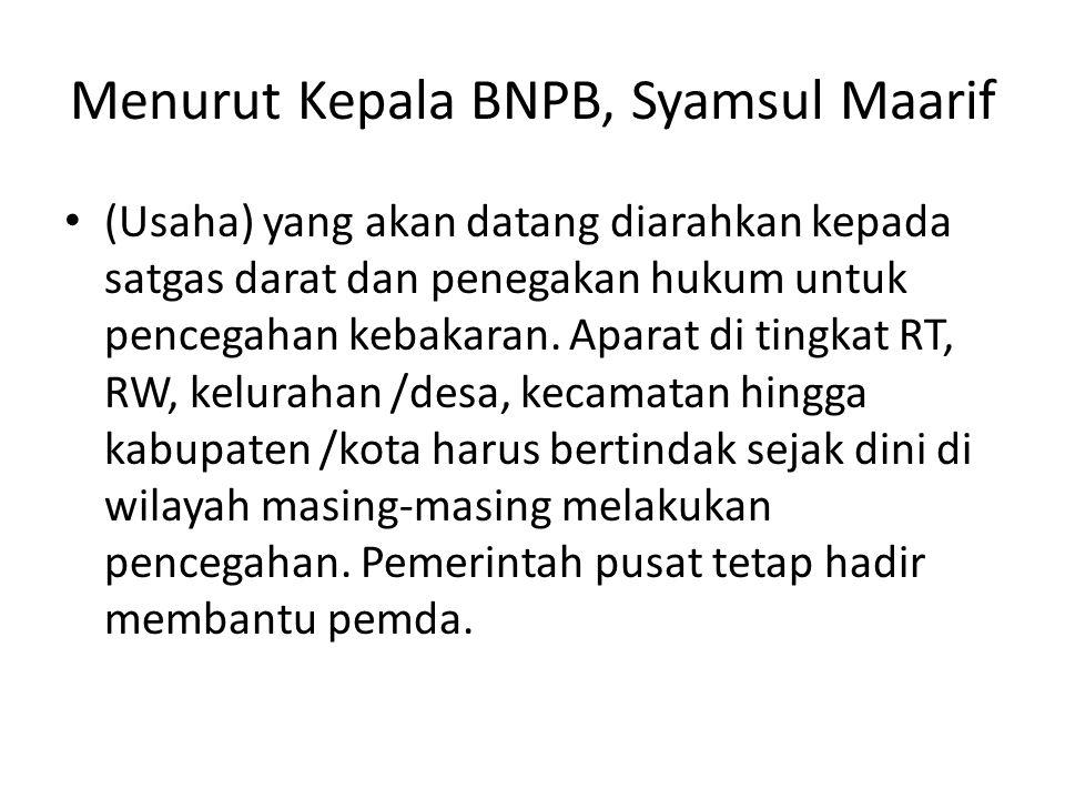 Menurut Kepala BNPB, Syamsul Maarif