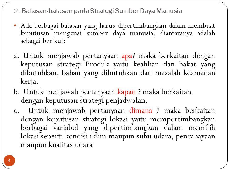 2. Batasan-batasan pada Strategi Sumber Daya Manusia