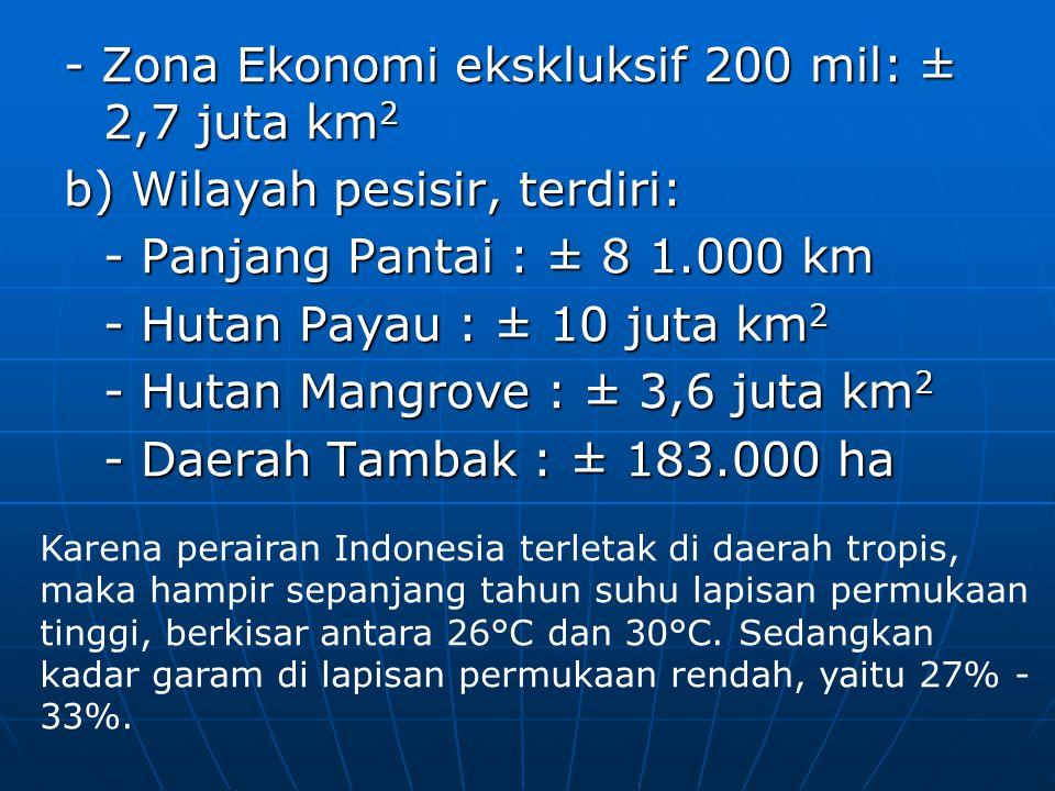- Zona Ekonomi ekskluksif 200 mil: ± 2,7 juta km2