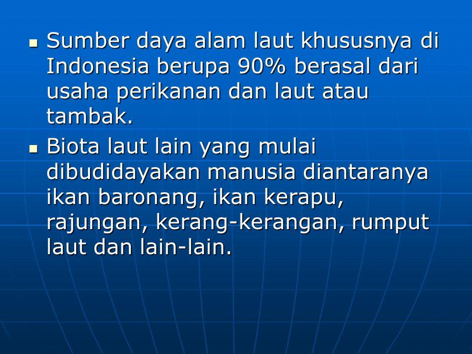 Sumber daya alam laut khususnya di Indonesia berupa 90% berasal dari usaha perikanan dan laut atau tambak.