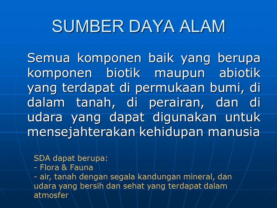 SUMBER DAYA ALAM
