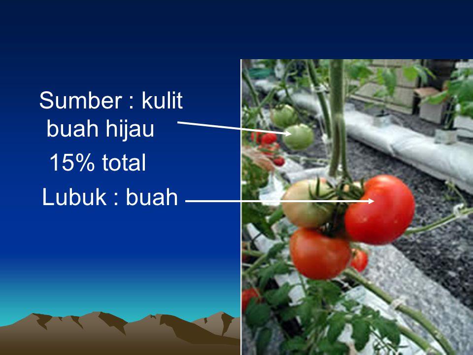Sumber : kulit buah hijau