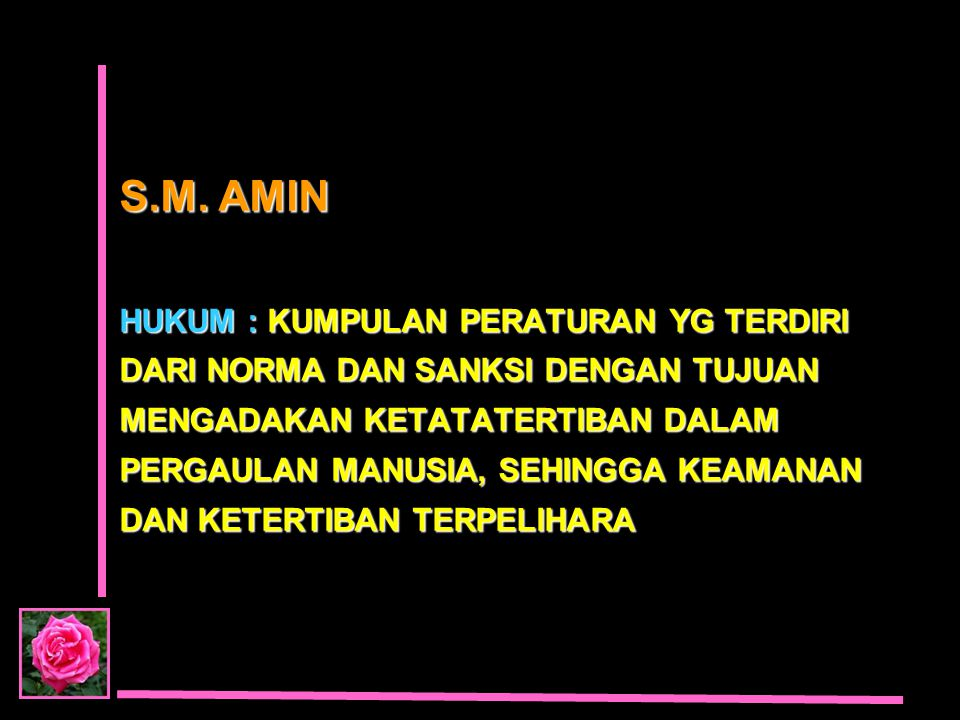S.M. AMIN