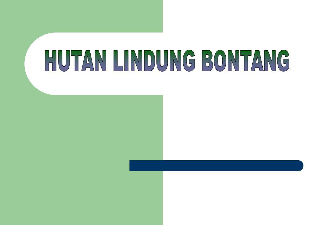 HUTAN LINDUNG BONTANG