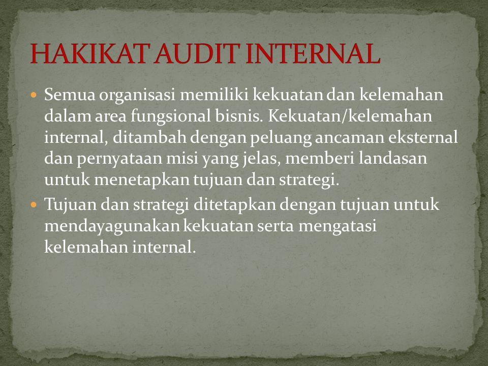 HAKIKAT AUDIT INTERNAL