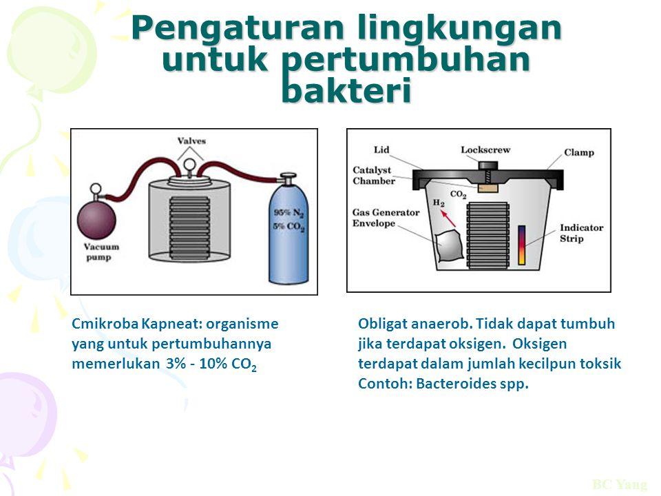 Pengaturan lingkungan untuk pertumbuhan bakteri