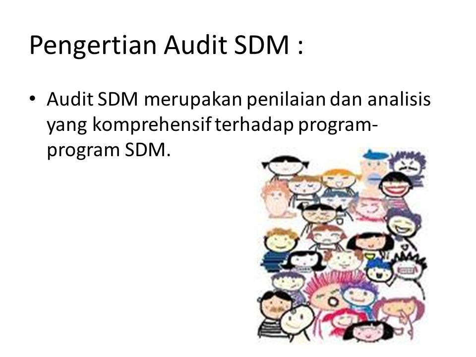 Pengertian Audit SDM : Audit SDM merupakan penilaian dan analisis yang komprehensif terhadap program-program SDM.