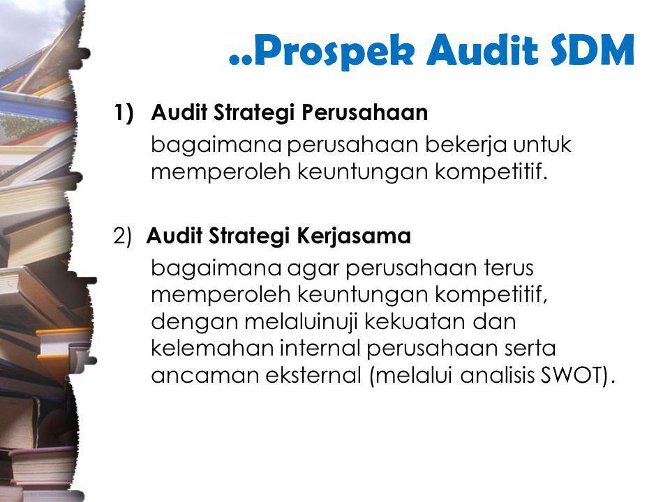 ..Prospek Audit SDM Audit Strategi Perusahaan