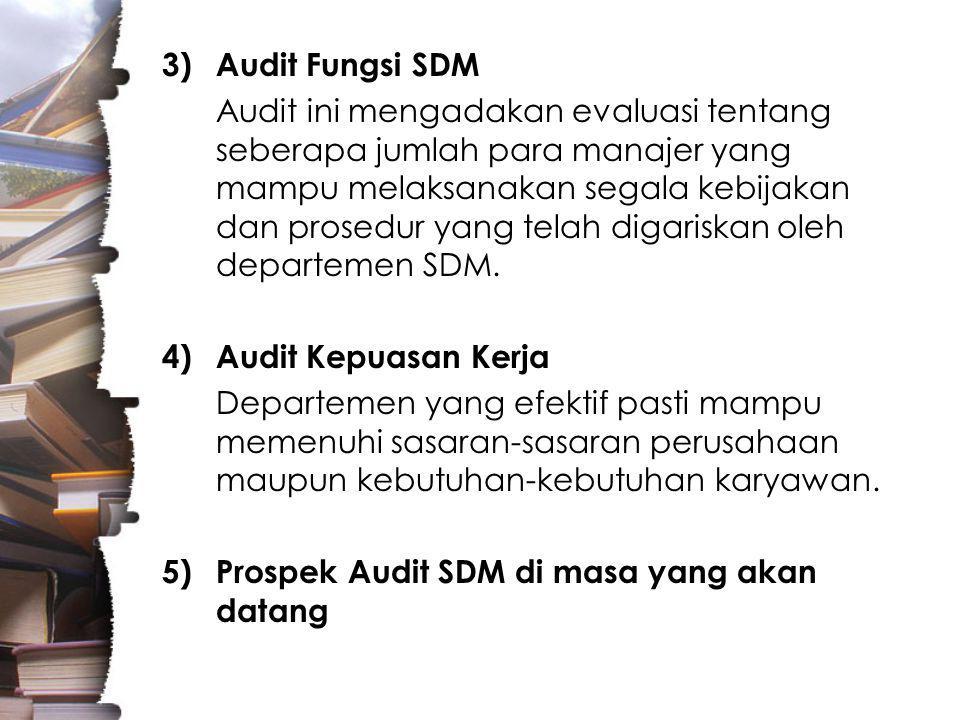 Audit Fungsi SDM