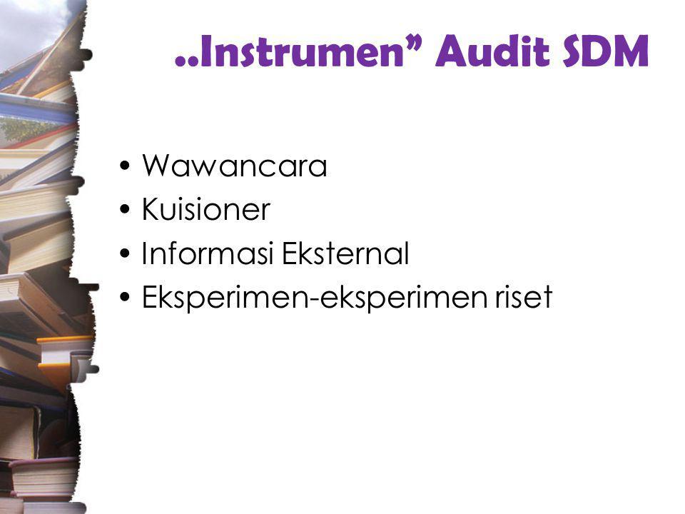 ..Instrumen Audit SDM Wawancara Kuisioner Informasi Eksternal