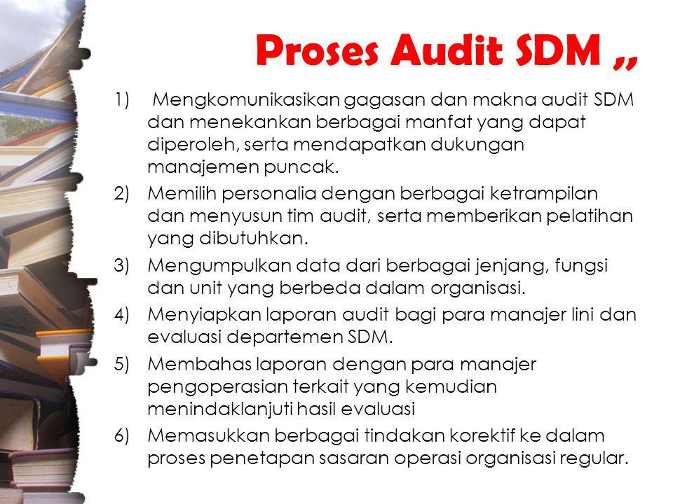 Proses Audit SDM ,,