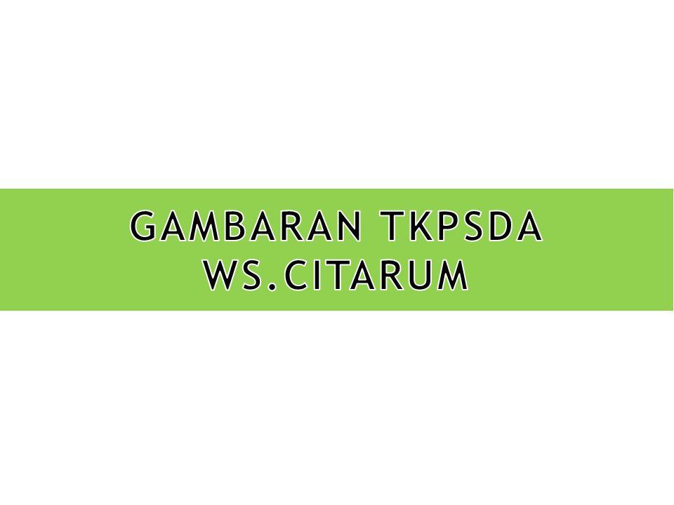 GAMBARAN TKPSDA WS.CITARUM