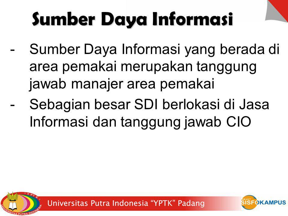 Sumber Daya Informasi Sumber Daya Informasi yang berada di area pemakai merupakan tanggung jawab manajer area pemakai.
