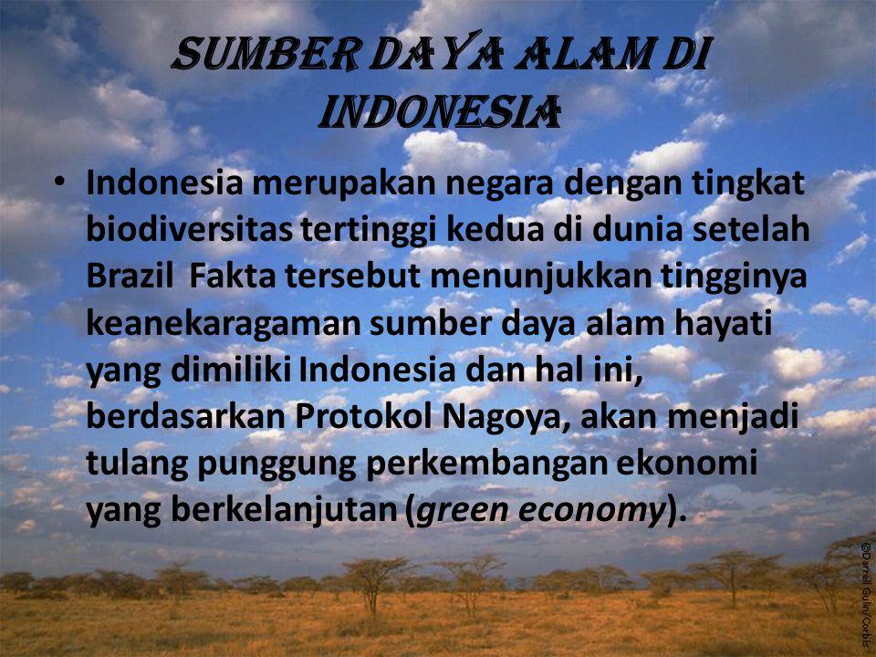 Sumber daya alam di Indonesia