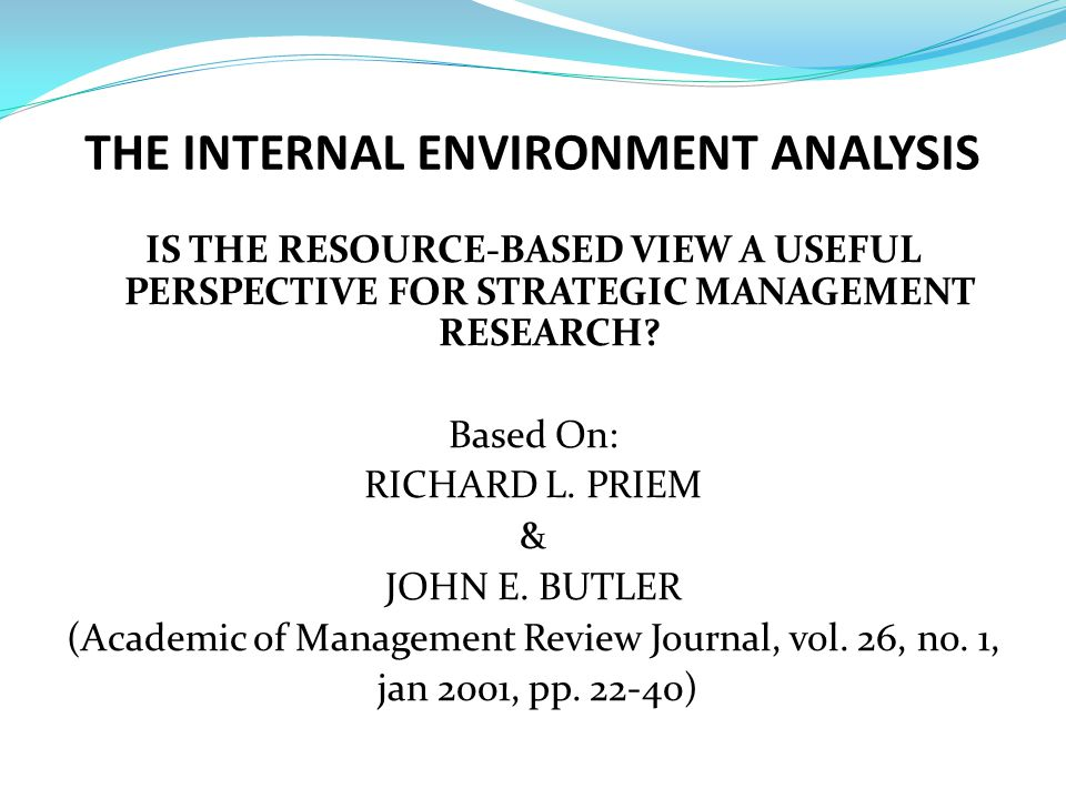 THE INTERNAL ENVIRONMENT ANALYSIS