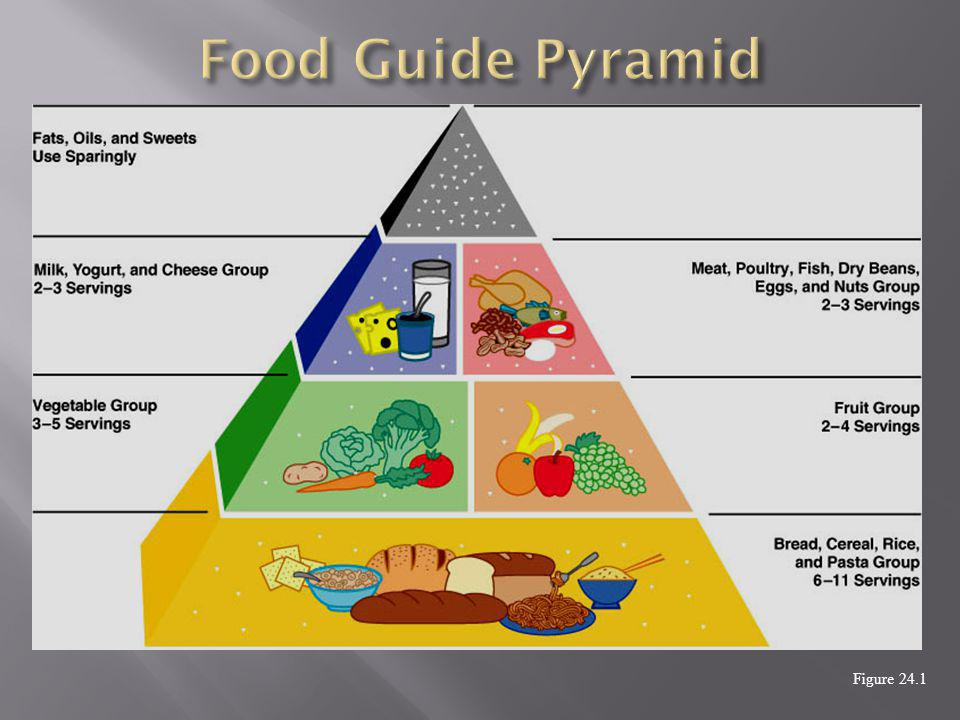 food pyramid and eating disorders essay Eating disorders are a group of conditions marked by an unhealthy relationship with foodthere are three main types of eating disorders: anorexia nervosa this is characterized by weight loss.
