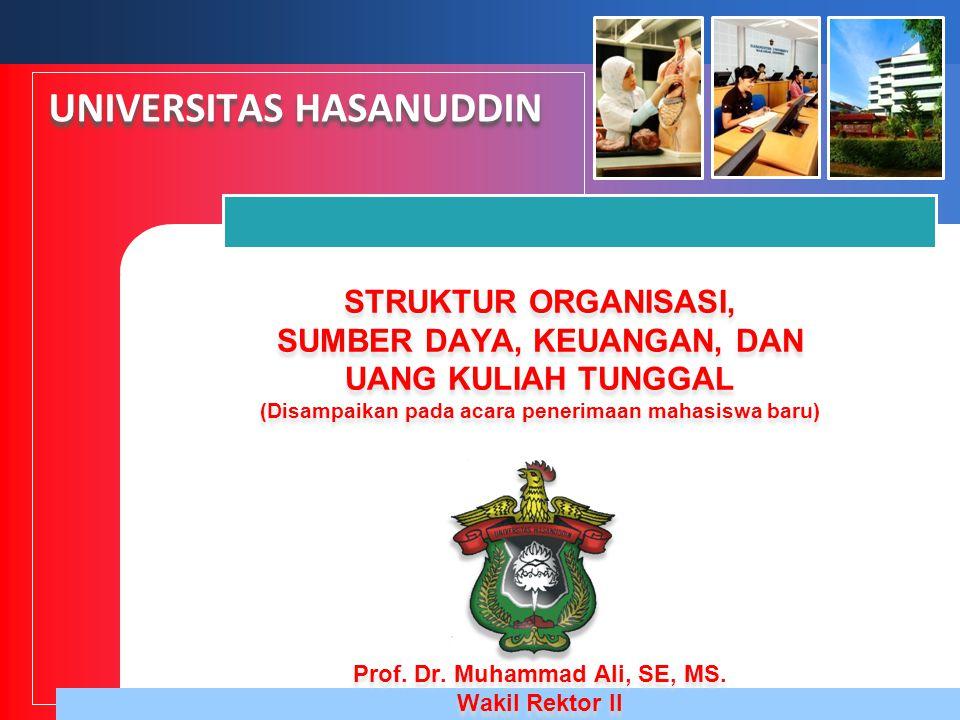 Prof. Dr. Muhammad Ali, SE, MS.