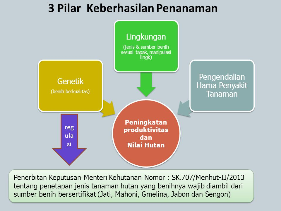 3 Pilar Keberhasilan Penanaman