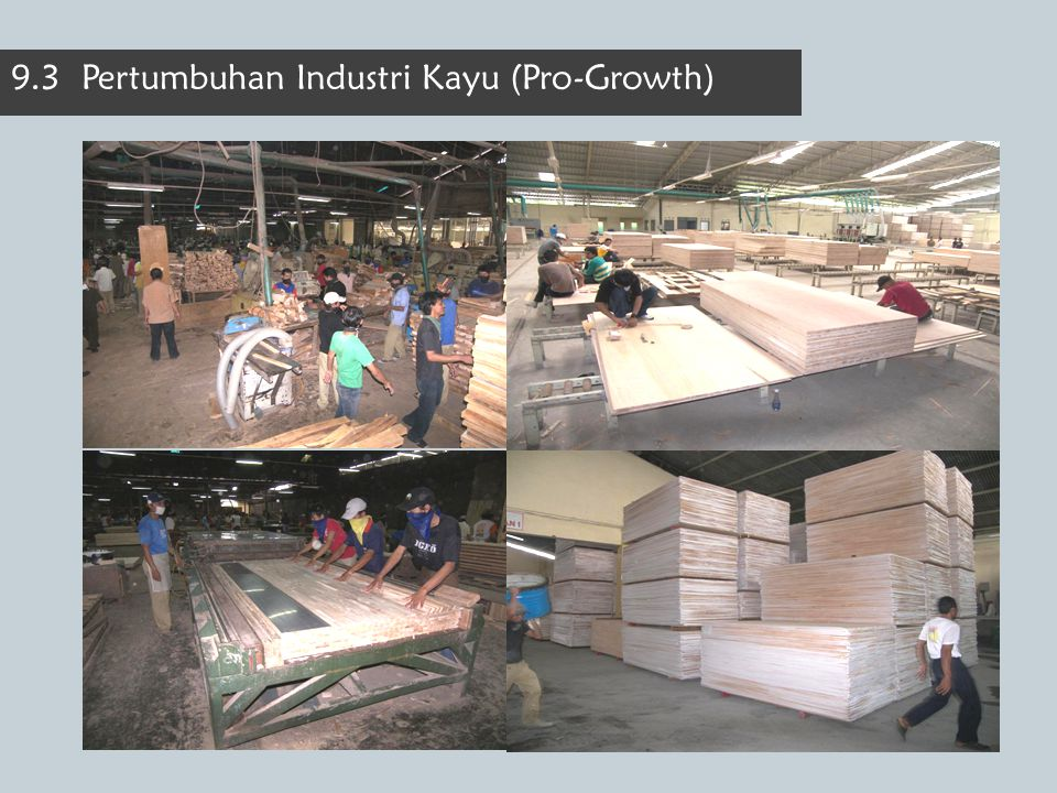 9.3 Pertumbuhan Industri Kayu (Pro-Growth)