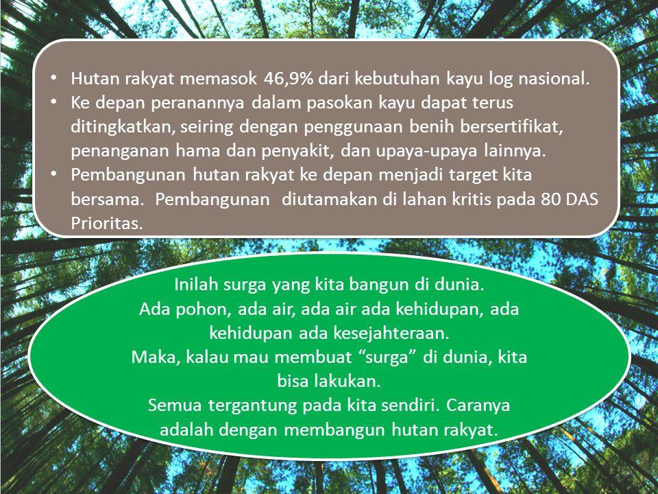 Hutan rakyat memasok 46,9% dari kebutuhan kayu log nasional.