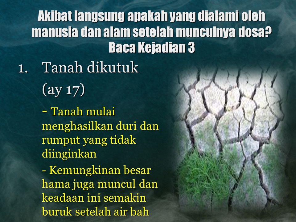 - Tanah mulai menghasilkan duri dan rumput yang tidak diinginkan