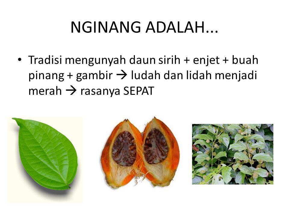 NGINANG ADALAH...
