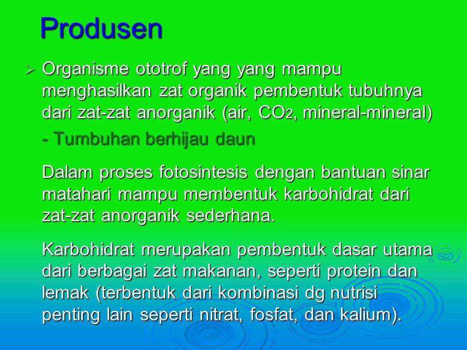 Produsen Organisme ototrof yang yang mampu menghasilkan zat organik pembentuk tubuhnya dari zat-zat anorganik (air, CO2, mineral-mineral)