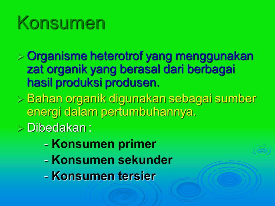 Konsumen Organisme heterotrof yang menggunakan zat organik yang berasal dari berbagai hasil produksi produsen.