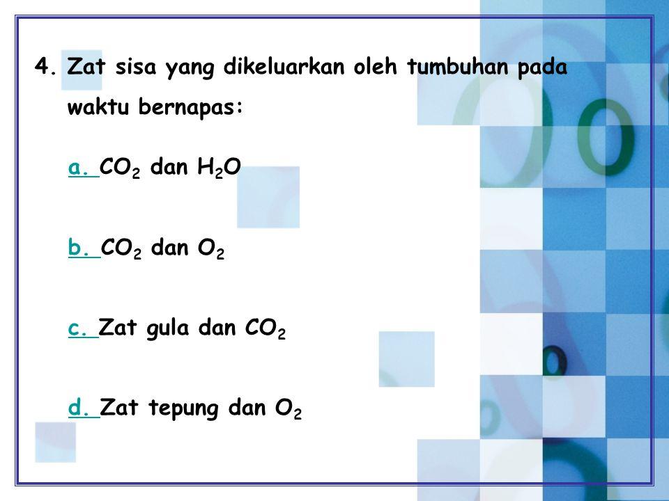 4. Zat sisa yang dikeluarkan oleh tumbuhan pada